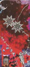 BalancLeren - Elles Smit - Visualisaties - De dubbele ster