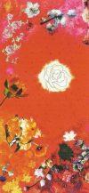 De witte roos - Balancleren Elles Smit Visualisaties